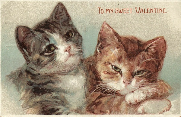 To My Sweet Valentine Two Cats Vintage Postcard